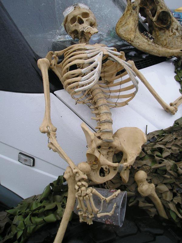 Скелет байк фест шоу