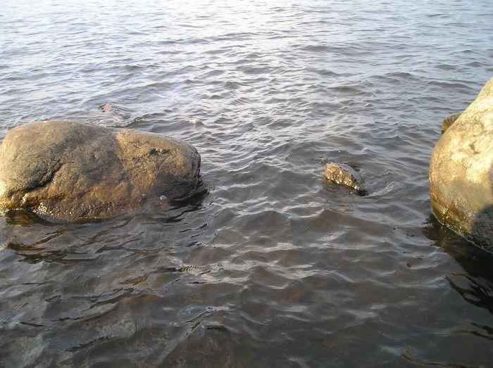 камни онега озеро