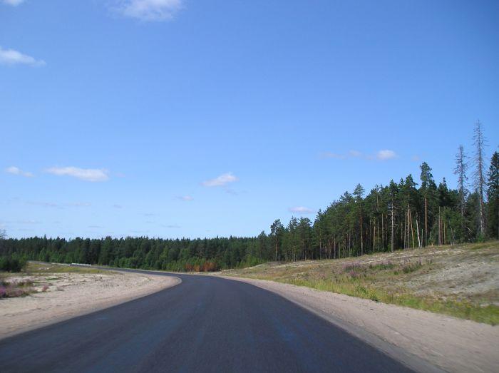 идеально гладкое дорожное покрытие в России