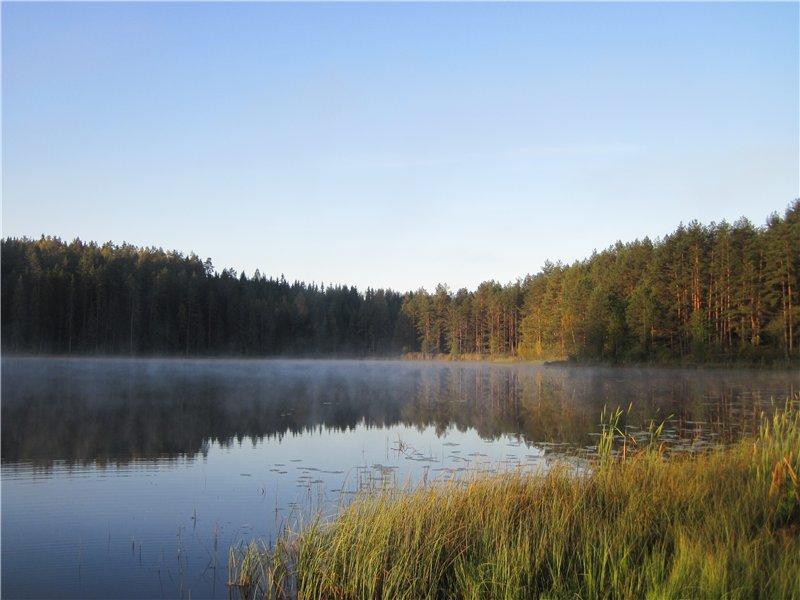 Красивый вид на озеро