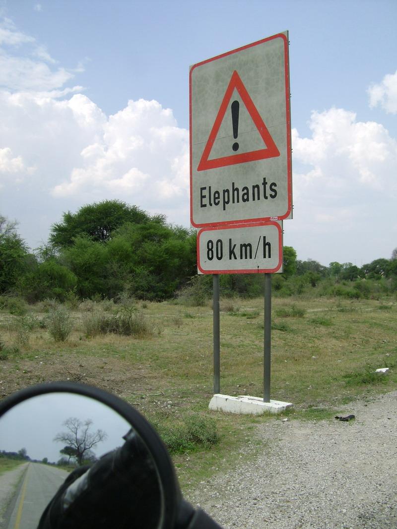 Африканский дорожный знак, указатель