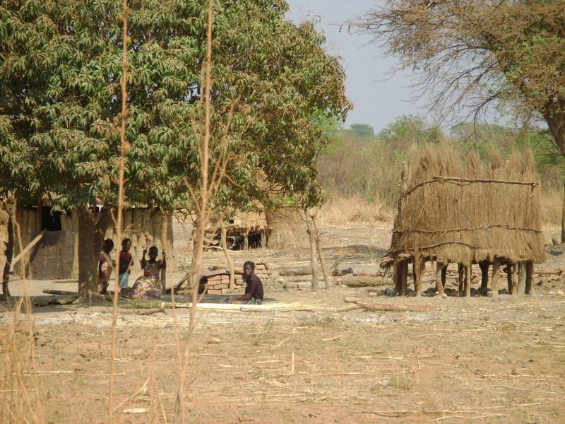 Африканские будни