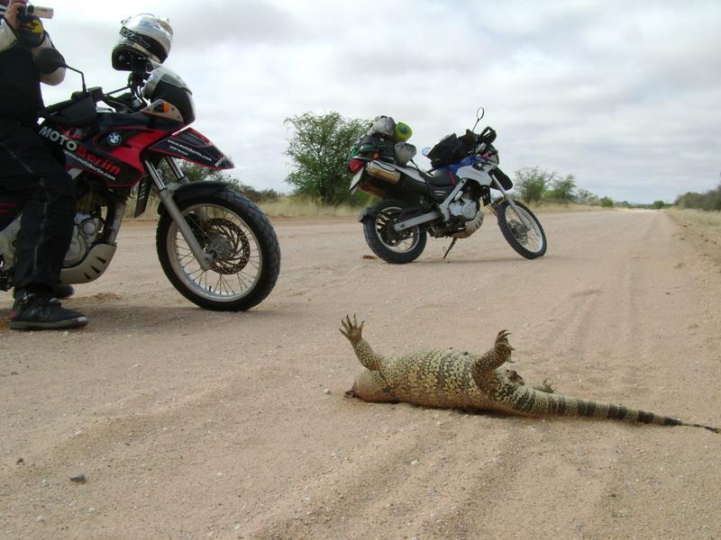 Africa BMW Dakar