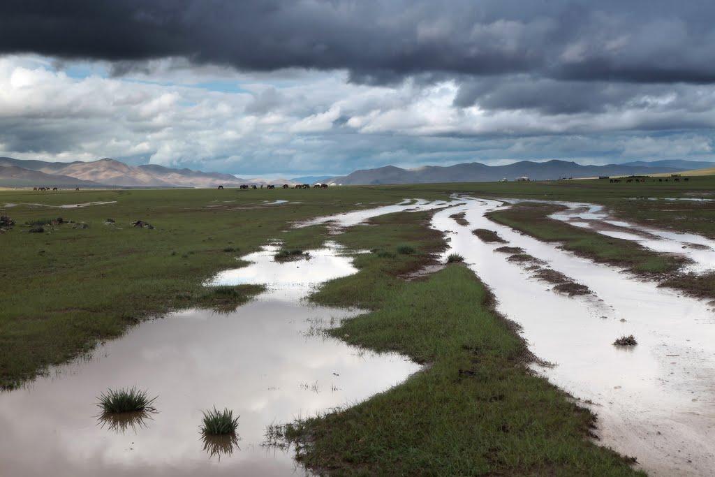 река в Монголии