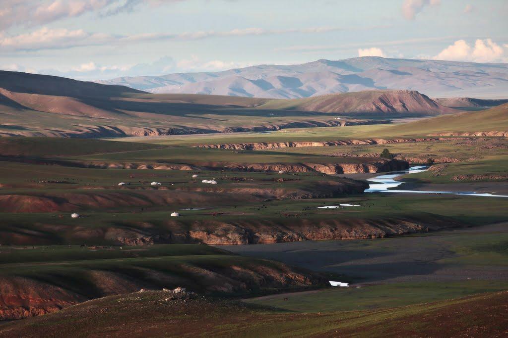 Виды монголии